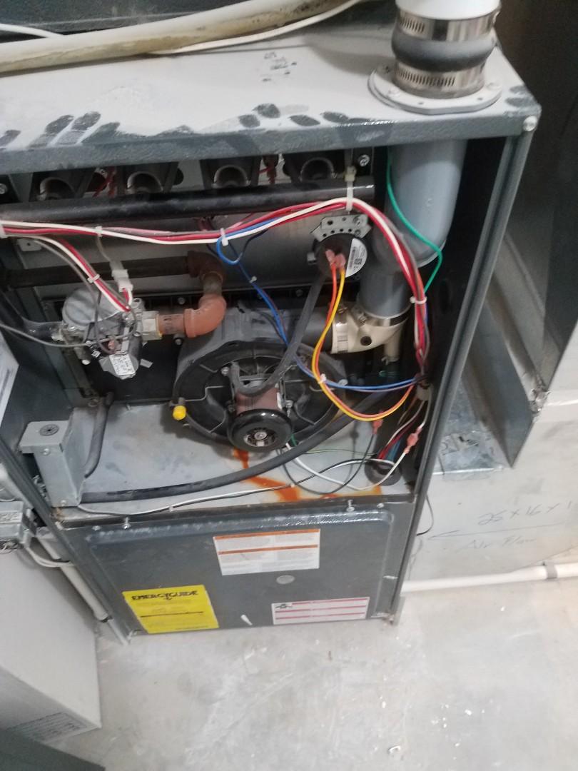 Maple Grove, MN - No heat on Goodman furnace in Albertville. Found failed fan limit disc.