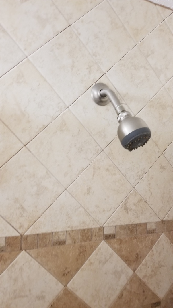 Clean drains and repair shower valve