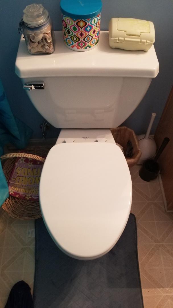 Jeffersonville, IN - New toilet installation, pressure assist