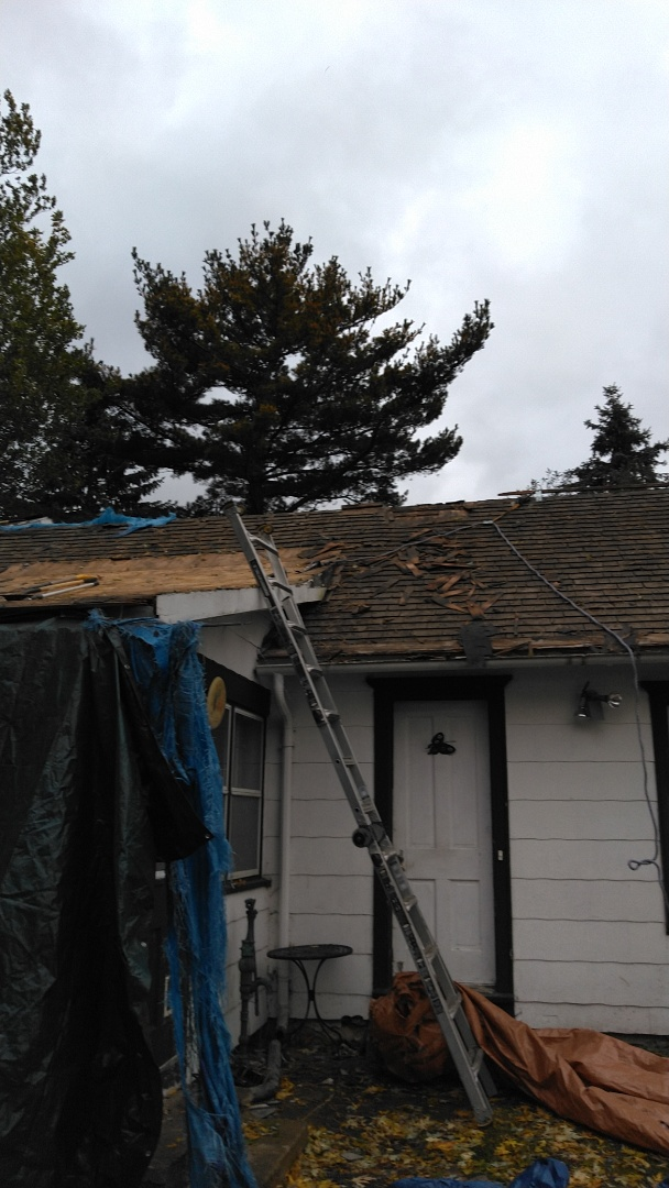 New roof coming soon