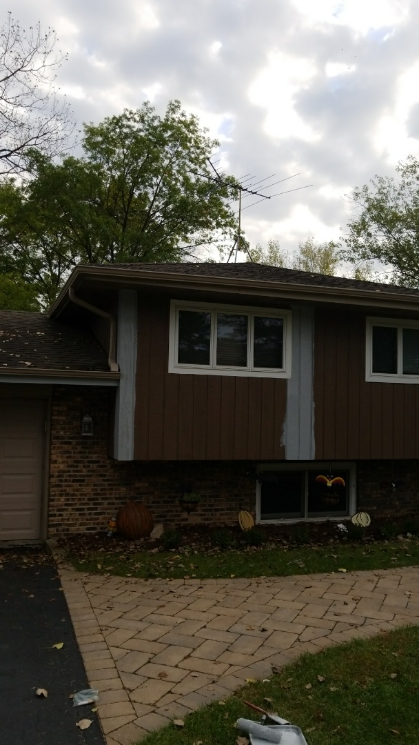 Naperville, IL - Cedar siding repair and new gutters