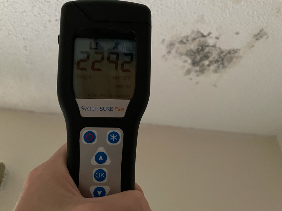 Visible mold growth on bedroom ceiling in a residence in north Pensacola. Customer has recently replaced the roof eliminating the source of moisture. Next step is to treat the mold with a good anti-microbial and paint the ceiling.