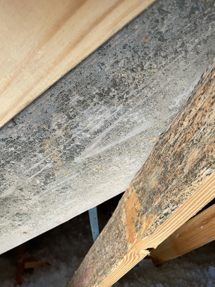 Home in North Pensacola had roof damage and now has discoloration on the joists in the attic, after inspecting the attic we determined that the area in question was not mold and shouldn't require any further concern. Customer is very happy with the outcome.