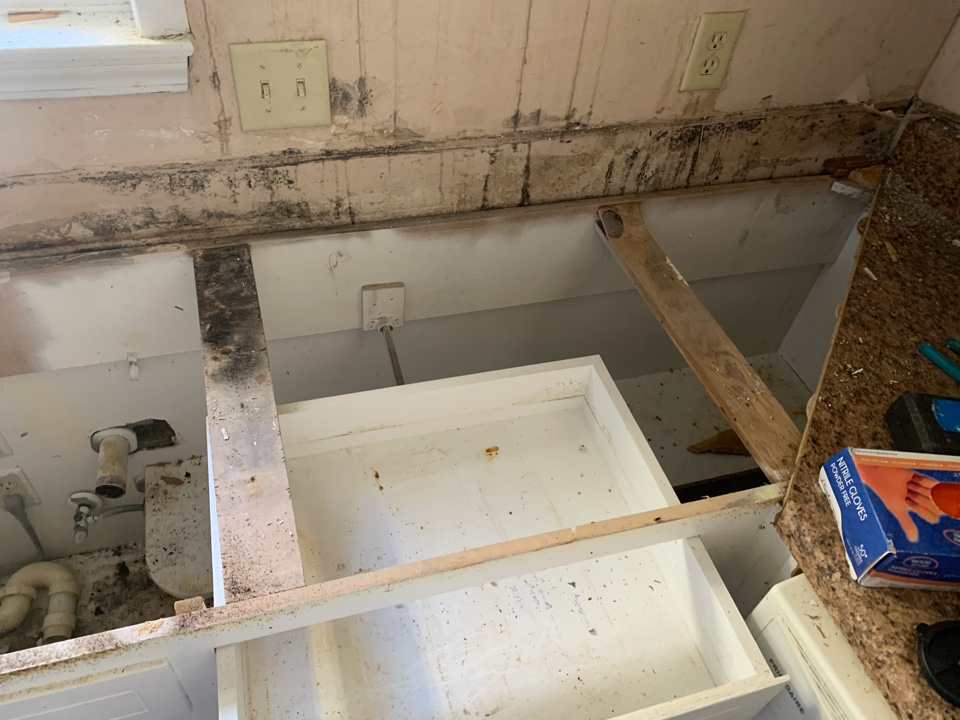 Mold Remediation in a Residential Home in Bellview