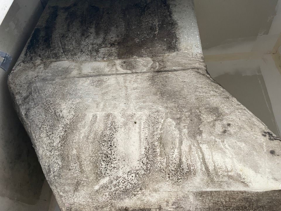 Pensacola Beach condo had an AC issue allowing condensation to build up in the AC closet allowing mold to grow. Simple fix, service the unit and HEPA vacuum the closet and treat and paint with a mold sealer. Easy fix.