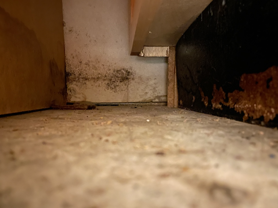 Small water leak in a condo in Pensacola Beach. Recommending a dry out and treatment with anti microbial.
