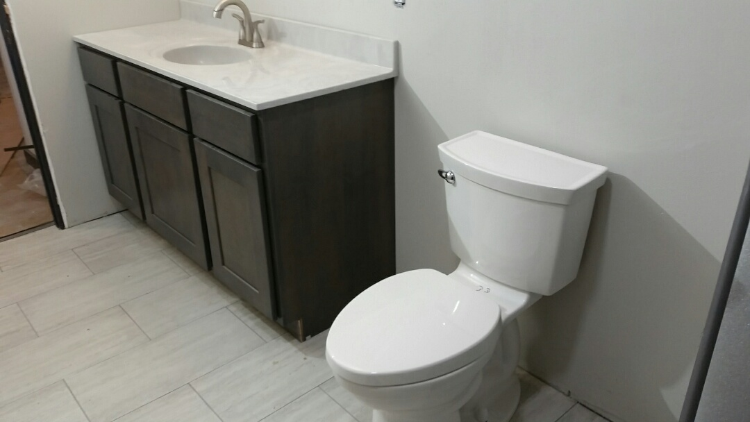 Middleton, WI - Plumbing. Install Delta sink faucet. Install American Standard toilet.