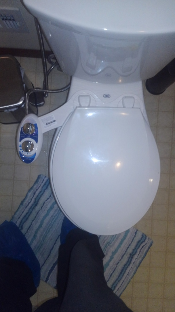 Madison, WI - Customer request plumber to install bidet and also hose spigot