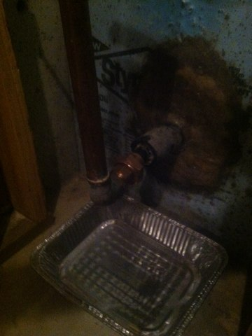 Princeton, NJ - Today we are fixing a broken water service