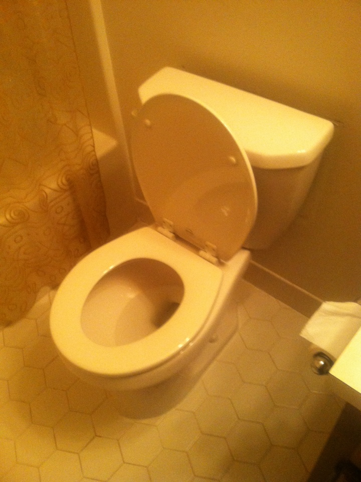 Marlboro Township, NJ - Today I installed 2 new almond  toilets for a grate new customer
