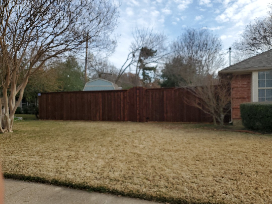 Arlington, TX - Fence project done board on board cap on top arch gates dark walnut stain