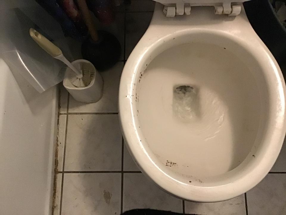 Sanford, FL - Cleared blockage in bathroom