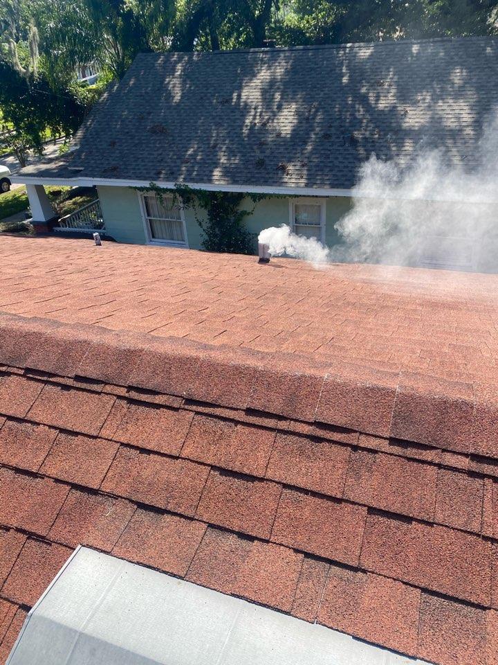 Orlando, FL - Smoke testing for rats