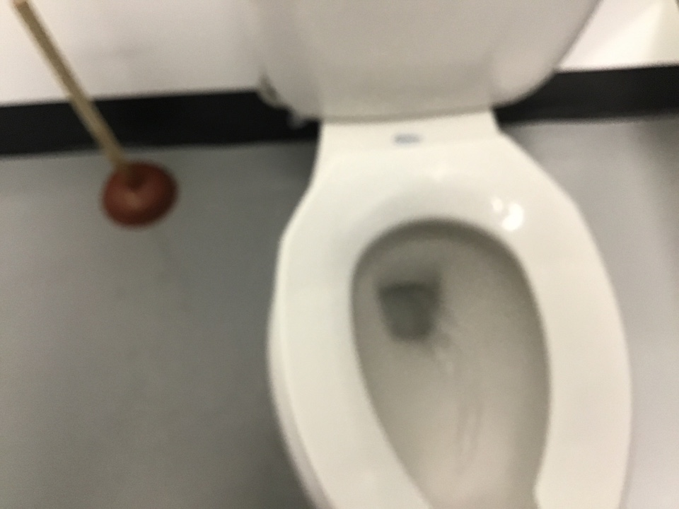 Longwood, FL - Unclogged toilet