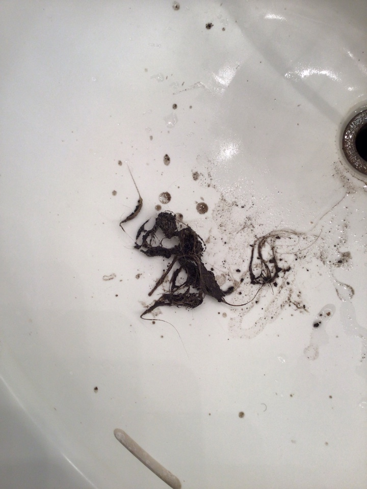 Longwood, FL - Client have sink drain clogged, i cleaner the drain line from the sink.