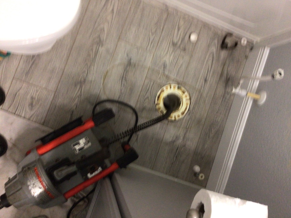 Oviedo, FL - Client have toilet clogged.