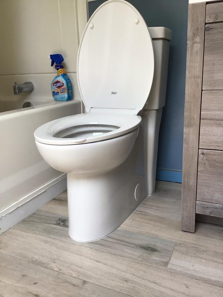 Altamonte Springs, FL - Client provided new toilet, i install new toilet.