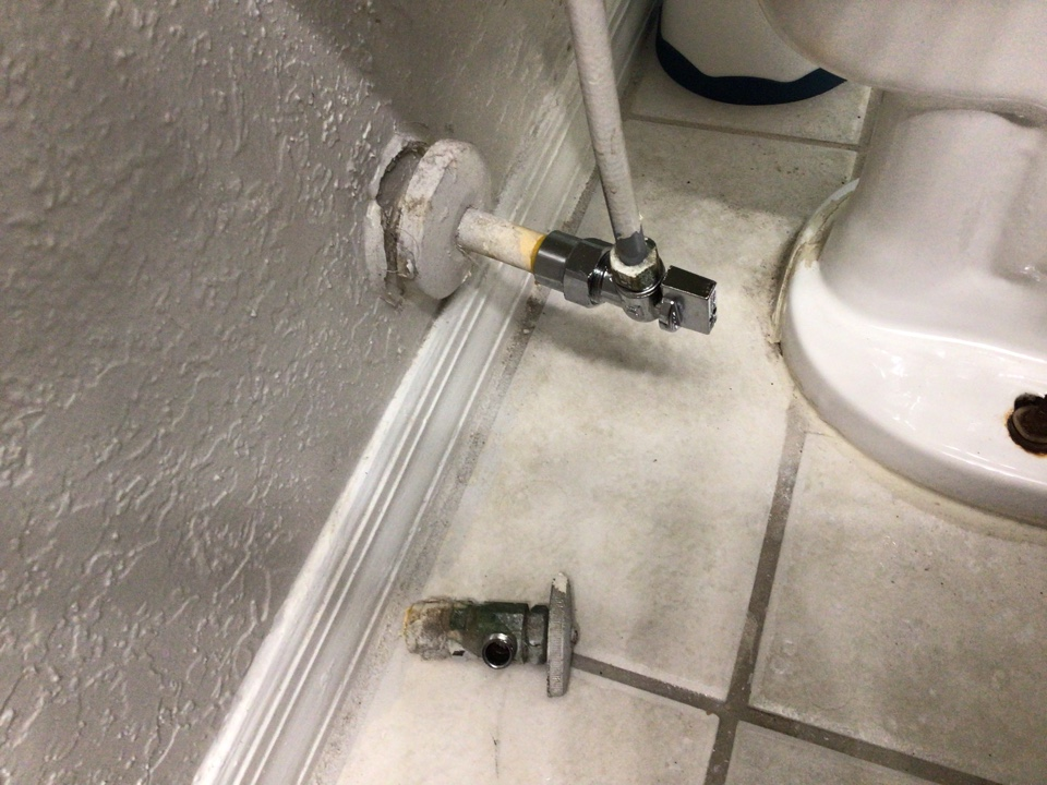 Winter Park, FL - Client have angle stops from the toilet is not working properly, i install new angle stops.