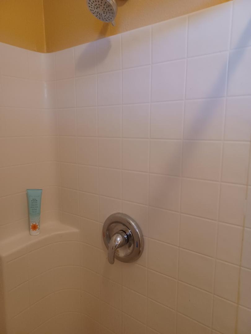 Sanford, FL - Shower valve install