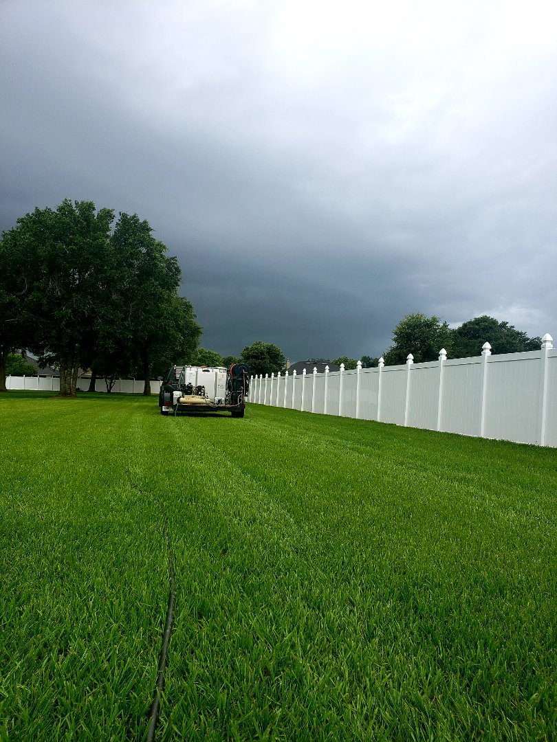 Cantonment, FL - Fence cleaning