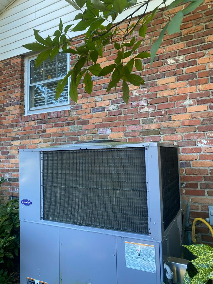 Serviced Carrier gas package unit