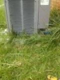 Hephzibah, GA - Performed AC repair on Rheem condenser.