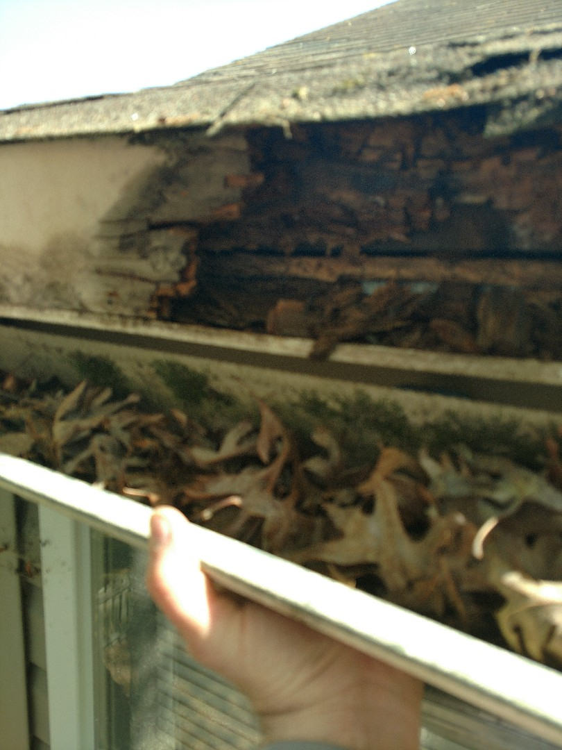 Suffolk, VA - This is what happens when you have clogged gutters! We're replacing rotten fascia and soffit, then installing our seamless LeafGuard gutters. Don't delay when you have this type of damage!