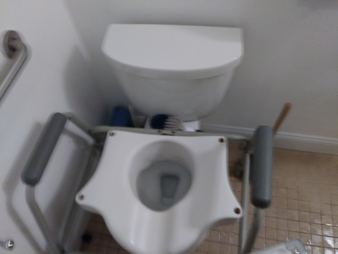 Brookline, MA - Leaking toilet drain snaking drain cleaning plumbing sewage
