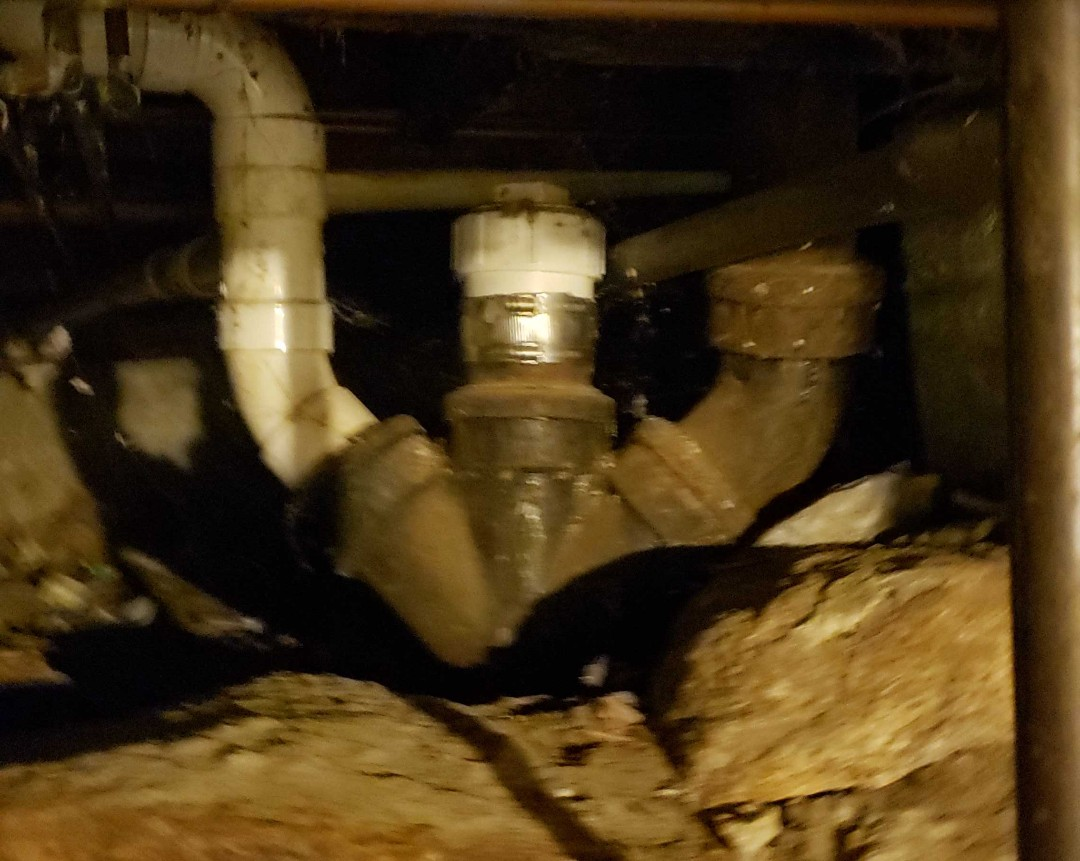 Clogged main sewer drain roots grease drain snaking leaking sewage plumbing affordable 24 hour service emergency services reliable efficient clogged toilet near me