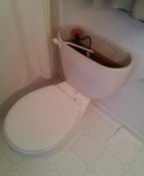 Wheat Ridge, CO - Briggs toilet repair