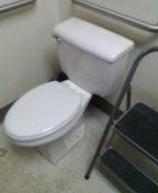 Evergreen, CO - Crane toilet repair