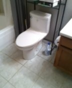Wheat Ridge, CO - Remove and reseal toilet