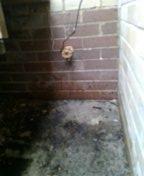 Denver, CO - Hose faucet replacement