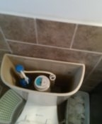 Lakewood, CO - Glacier Bay toilet repair