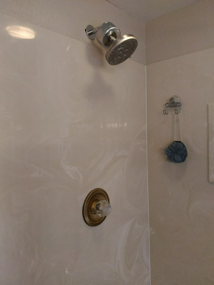 Westminster, CO - Delta shower arm replacement