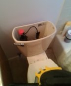 Denver, CO - American standard toilet tank replacement