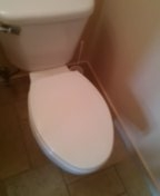 Golden, CO - Toilet seat replacement