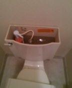 Arvada, CO - Kohler toilet repair