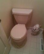 Wheat Ridge, CO - Remove and reset toilet