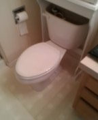 Westminster, CO - Toilet seal replacement