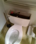 Westminster, CO - Toilet repair