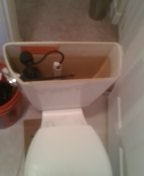 Lakewood, CO - Kohler toilet repair