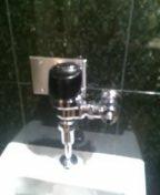 Evergreen, CO - Urinal repair