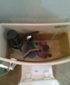 Denver, CO - American Standard toilet repair