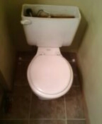 Lakewood, CO - Replace a toilet seal