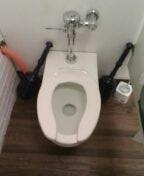Golden, CO - Standard toilet repair
