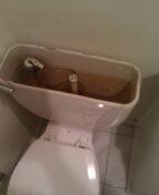 Englewood, CO - Eljer toilet repair
