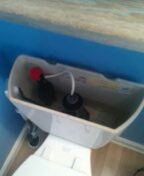 Westminster, CO - Kohler toilet repair