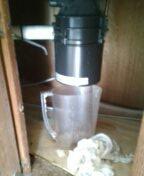 Arvada, CO - Garbage disposal replacement