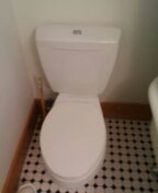 Golden, CO - Toto toilet repair